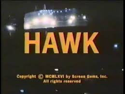 HAWK - 1966 NBC crime drama starring Burt Reynolds. Available on DVD-R from RewatchClassicTV.com