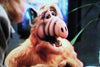 PROJECT: ALF (ABC-TVM, 2/17/96) - Rewatch Classic TV - 10
