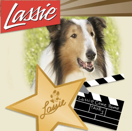 LASSIE UNLEASHED: 280 DOG YEARS IN TV + BONUS (ABC 12/29/94) RARE!