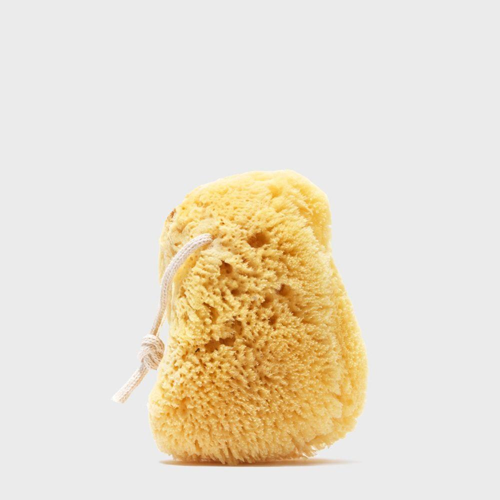 Public Goods Personal Care Sea Sponge