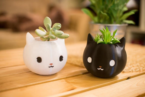 cat planters with succulents