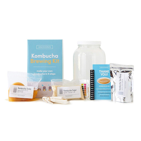 joshua tree kombucha kit
