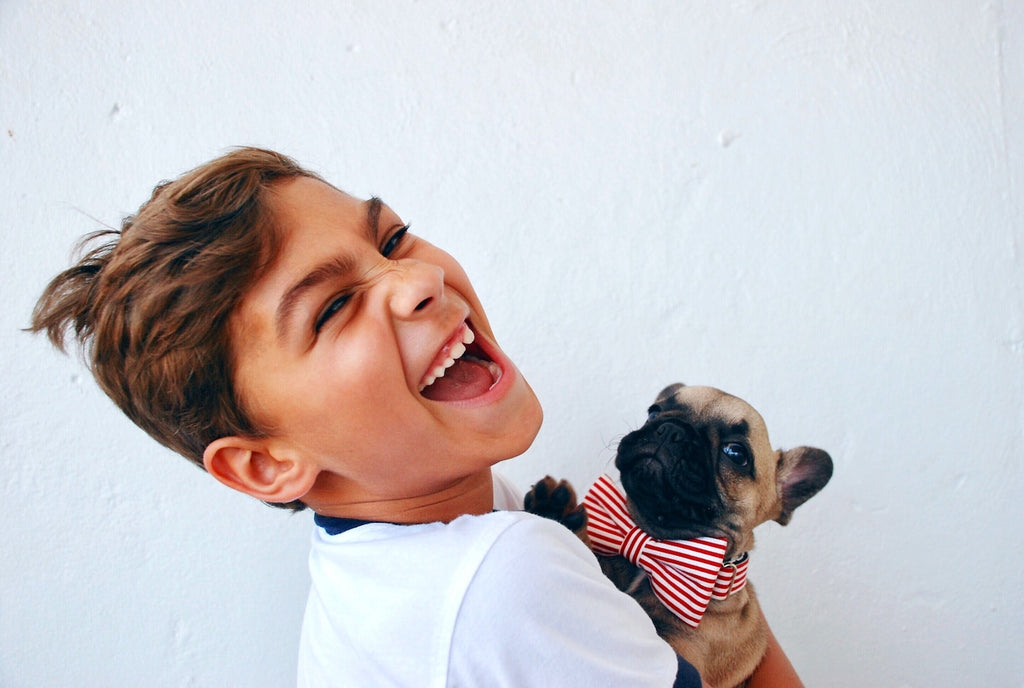 kid laughs with a dog with a bowtie white background
