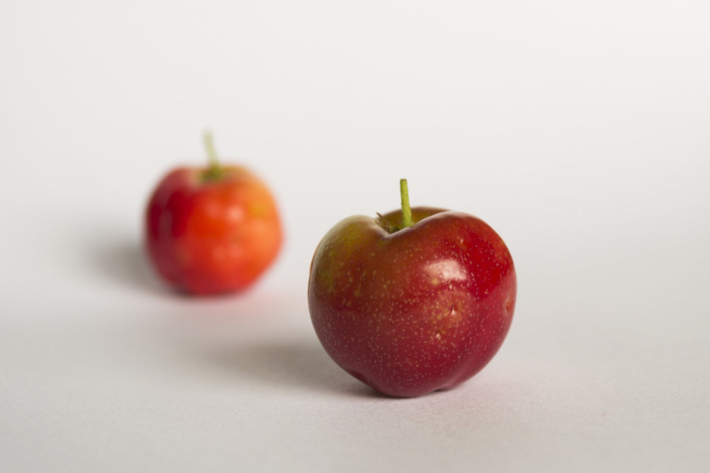 picture of a single acerola cherry with white background.