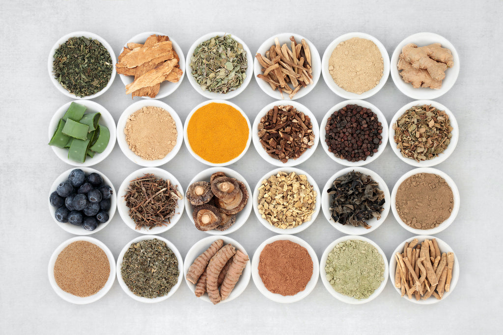 Adaptogen health food collection with fruit, herbs, spices & supplement powders