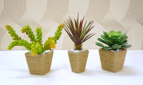 Decorative Rope Wrapped Planters - Ravenox