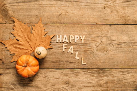 Diy Fall Decor Ideas Fall Decorating Ideas With Rope From