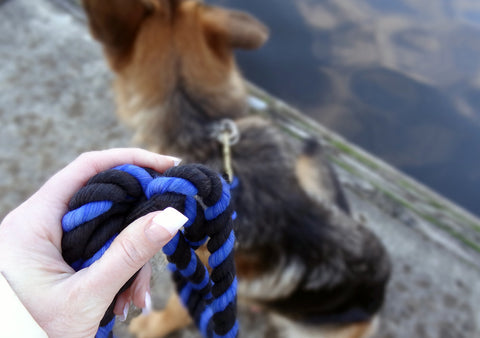 Ravenox-Twisted-Cotton-Rope-Dog-Leash-Black-Black-Royal-Blue-na-Dog-na-Dock-eriri