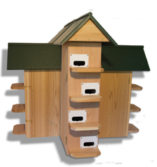 Ravenox_Purple_Martin_Tunnel_Trap_Birds_Gourds_T-14_House_Cedar_Green_Roof
