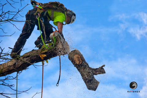 Ravenox_Tree_Work_Rope_Poly-Dacron_Fall_Protection_OSHA-Logo