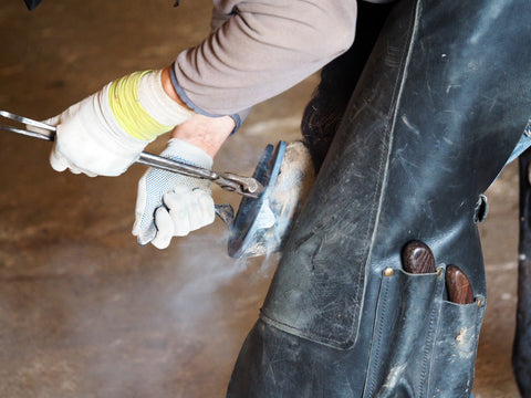 Farrier Using Horseshoe Pliers for Equine Care