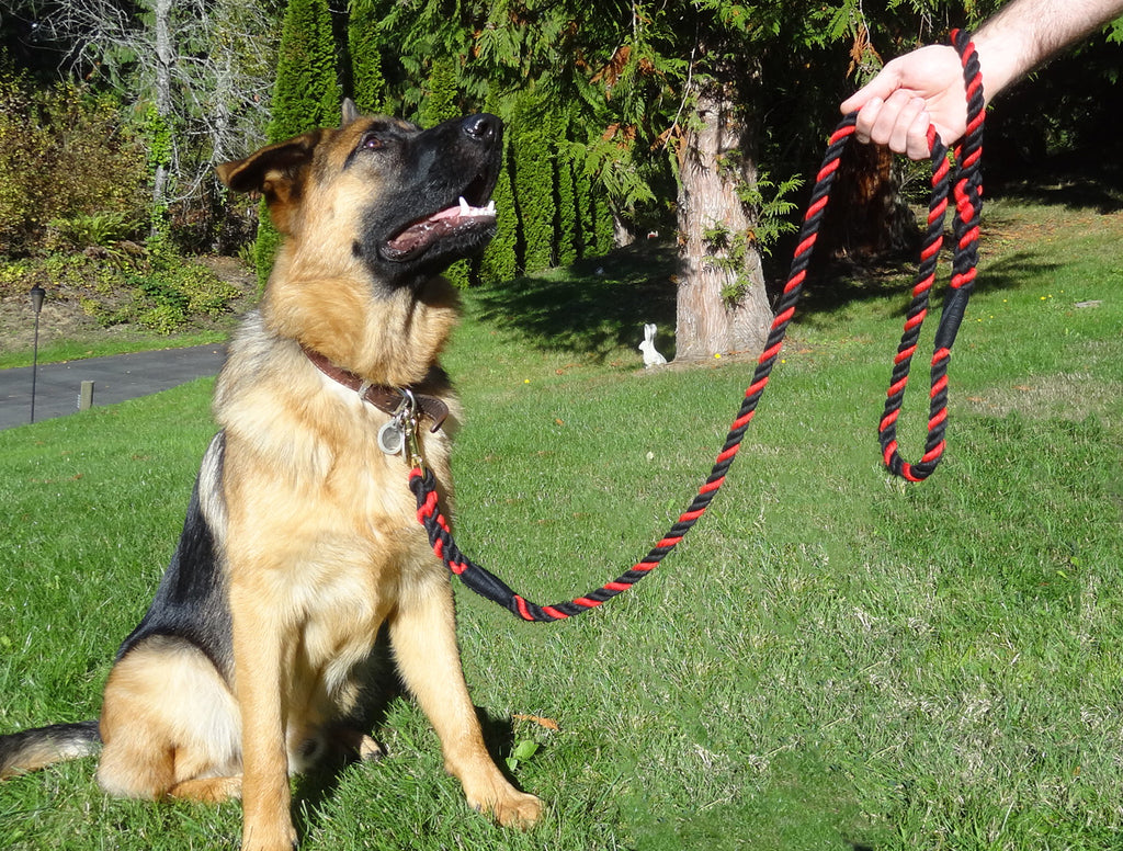 "Handmade Twisted Cotton Rope Dog, Pet Leash Horse Lead (Black, Black & Red) - ""Thin Red Line"""