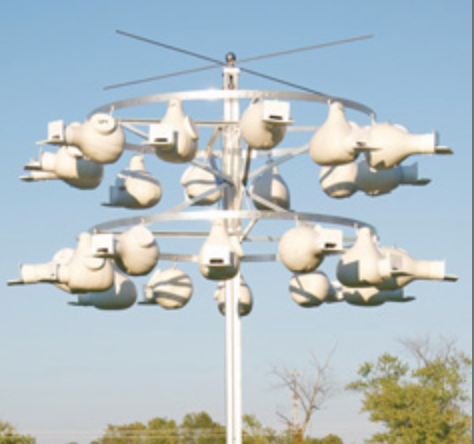 Gemini Gourd Rack System 24 for Purple Martins