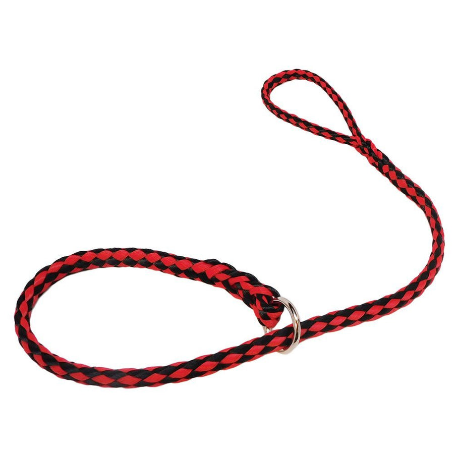 10 Pack Polyethylene Slip Lead Dog Leashes