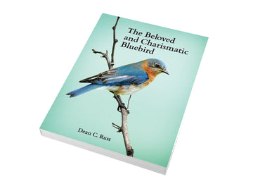 Book - The Beloved and Charismatic Bluebird