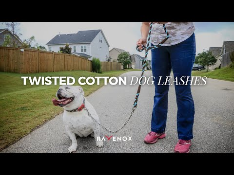 Handmade Twisted Cotton Rope Dog Leash