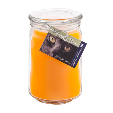 Orange Zest Odor Eliminator Candle