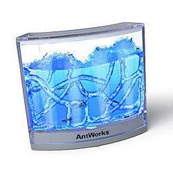 Antworks Illuminated