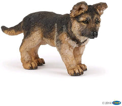 German Shepard Pup
