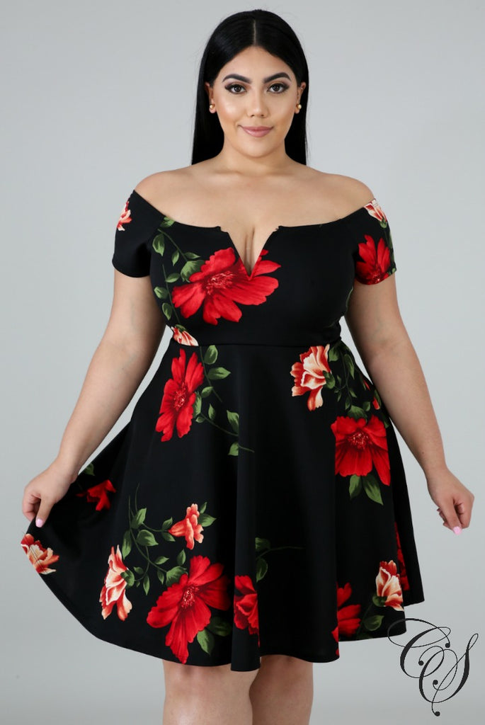Alejandra Floral Fun Flare Dress, Dresses - Designs By Cece Symoné