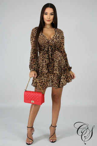 Emma Leopard Flare Dress