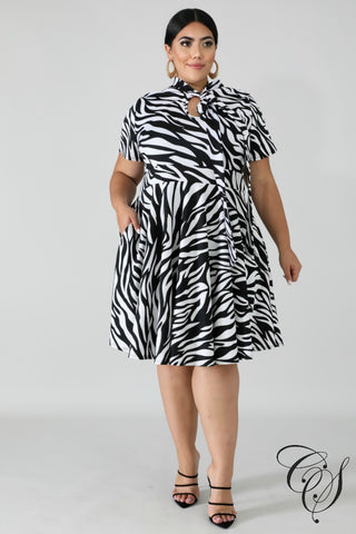 Jenny Stripes Flare Dress