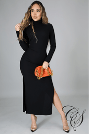 Debbie Turtle Neck Ribbed Knit Dress