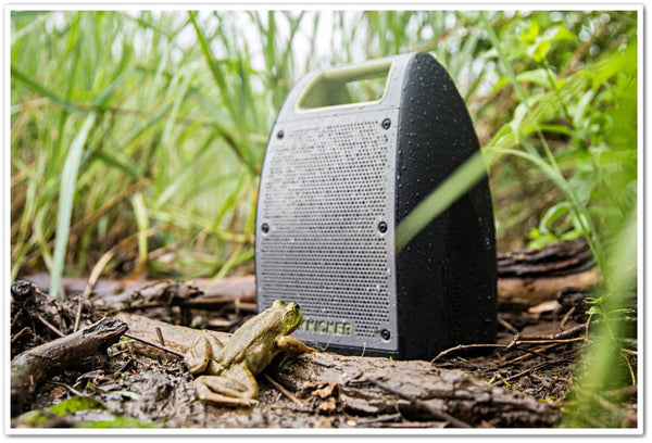Kicker Bullfrog Jump Wireless Music System