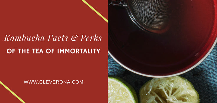 Kombucha Facts & Perks of The Tea of Immortality