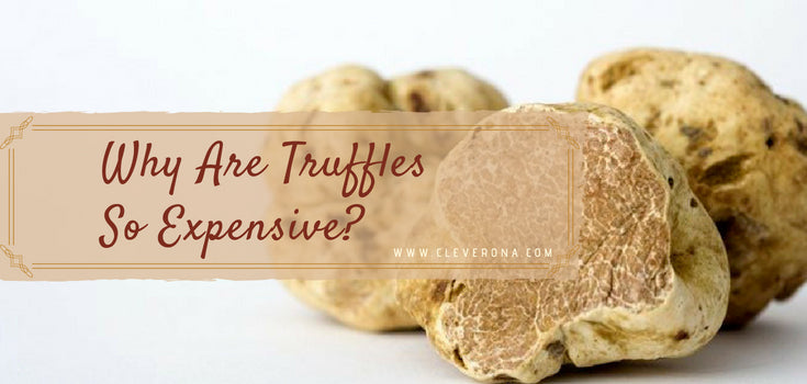 Why Are Truffles So Expensive?