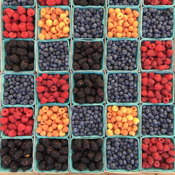 a variety of fruits stored separately