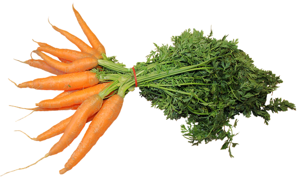 seasonal produce carrots