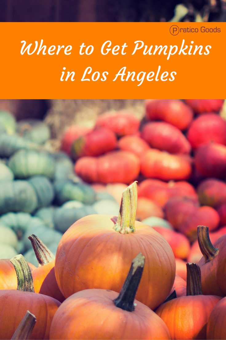 where to get pumpkins in los angeles