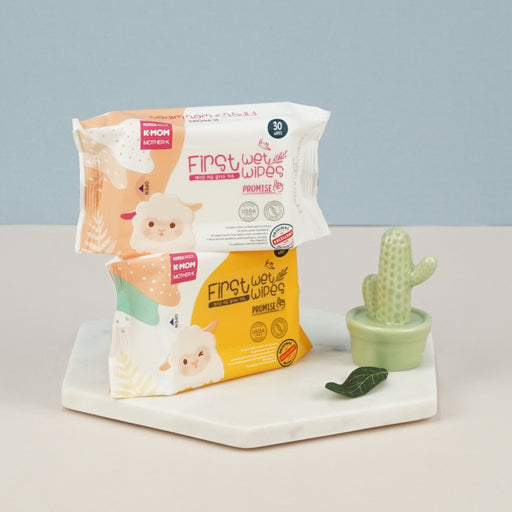 First Promise Wet Wipes (30pcs)
