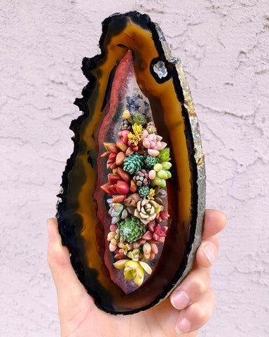 Gemstone Planter