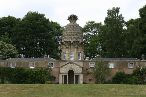 Dunmore Pineapple cupola, Scotland
