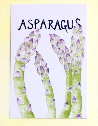 Watercolor Asparagus Postcard