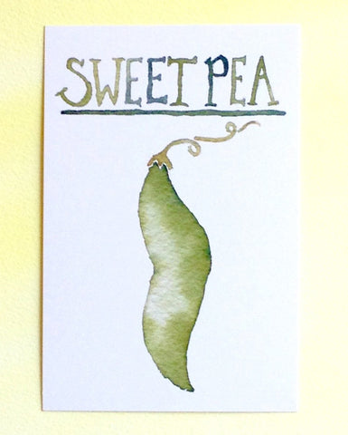 Watercolor sweet pea postcard