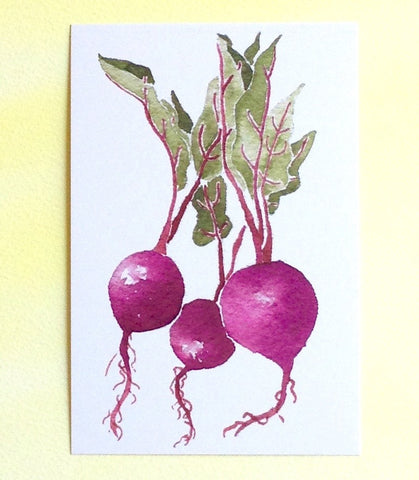 Watercolor beets postcard