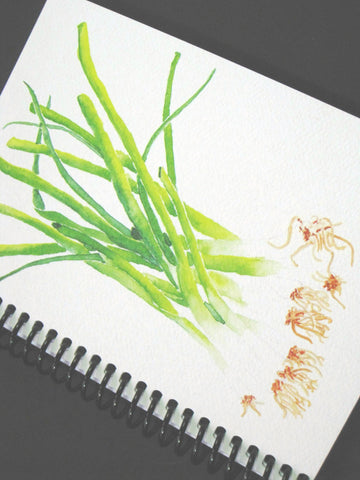 Blank notebook, watercolor of green onions