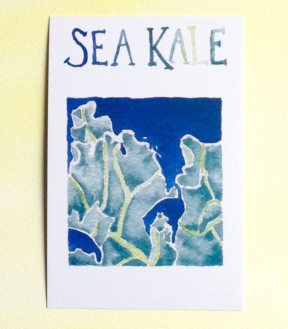 Watercolor Sea Kale Postcards