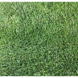 Classic Rye Lawn Seed