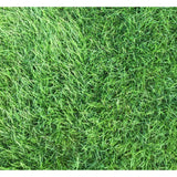 Rustic Blend Lawn Seed