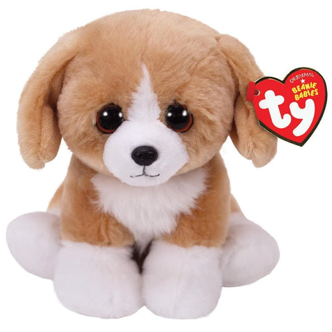 008421422692 Franklin Brown White Dog Beanie Ty - Calendar Club