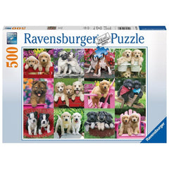 Puppy Pals Animal Puzzle 500 Piece Package Image