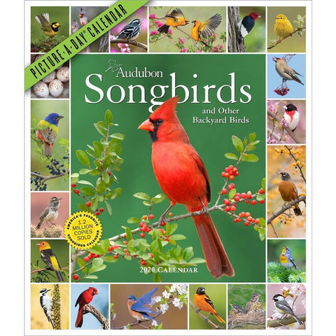 Audubon 365 Songbirds 2020 Wall Calendar Front Cover