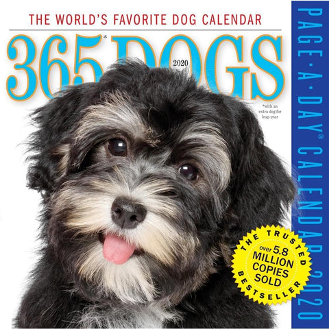 Dogs 365 2020 Box Calendar Front Cover