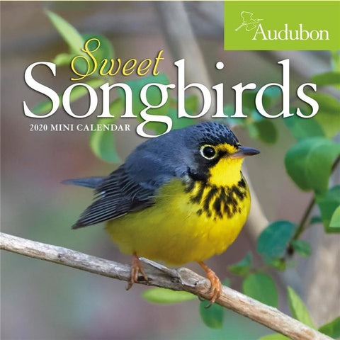 Sweet Songbirds Audubon Mini Front Cover
