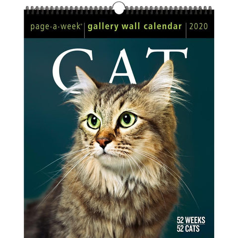 Cat Page A Week Gallery 2020 Wall Calendar Front Cover