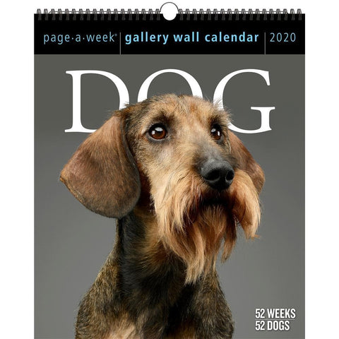 Dog Page A Week Gallery 2020 Wall Calendar Front Cover